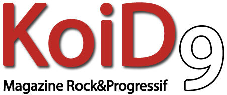 Read more about the article Review KoiD9 (France)